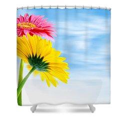 Two Gerberas Shower Curtain by Carlos Caetano
