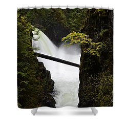 Upper Qualicum Falls Shower Curtain by Bob Christopher