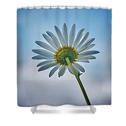 Upward Shower Curtain by Nathan Larson