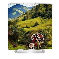 Vaca Shower Curtain by Skip Hunt