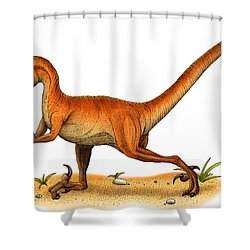Velociraptor Shower Curtain by Roger Hall and Photo Researchers
