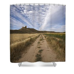 View Of A Castle Shower Curtain by Paul Maeyaert
