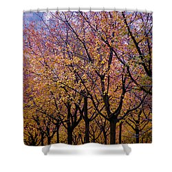 View Of Prague From Mala Strana Park Shower Curtain by Axiom Photographic