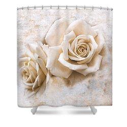 Vintage Rose Iv Square Shower Curtain by Jai Johnson