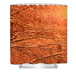 Warm Icy Reflections Shower Curtain by Sandi OReilly