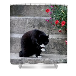 Washing Up Shower Curtain by Lainie Wrightson