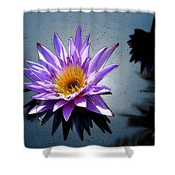 Water Lily Dream At Fairchild 2 Shower Curtain by Olivia Novak