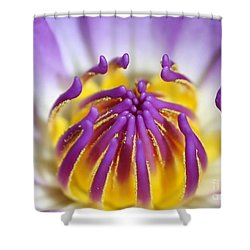 Water Lily Sticky Fingers Shower Curtain by Sabrina L Ryan