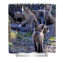 Welcome Shower Curtain by AnnaJo Vahle