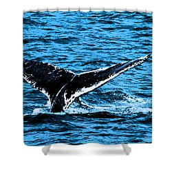Whale Dip Shower Curtain by Karol Livote