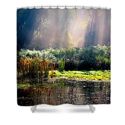 When Morning Hits The Marsh Shower Curtain by Carol Groenen