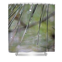 Whispers Of An Autumn Rain Shower Curtain by Maria Urso