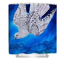 White Falcon Mascot Shower Curtain by Phyllis Barrett