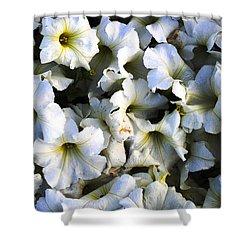 White Flowers At Dusk Shower Curtain by Sumit Mehndiratta