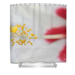 White Hibiscus Macro Shower Curtain by Sabrina L Ryan