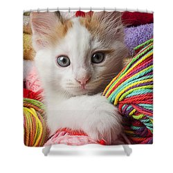White Kitten Close Up Shower Curtain by Garry Gay