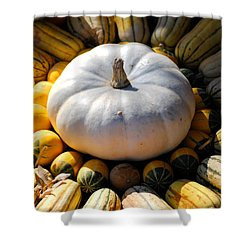 White Pumpkin Shower Curtain by Jai Johnson