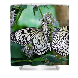 White Shower Curtain by Skip Willits
