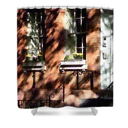 Window Boxes Greenwich Village Shower Curtain by Susan Savad