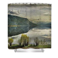 Window View Shower Curtain by Kym Clarke