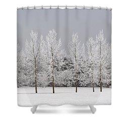 Winter, Calgary, Alberta, Canada Shower Curtain by Michael Interisano