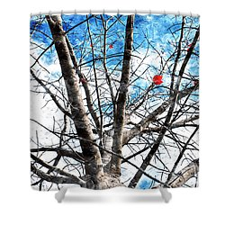 Winter Is Near Shower Curtain by Andee Design
