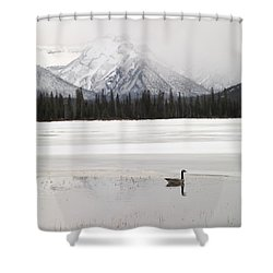 Winter Landscape, Banff National Park Shower Curtain by Keith Levit