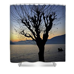 Winter Tree Shower Curtain by Joana Kruse