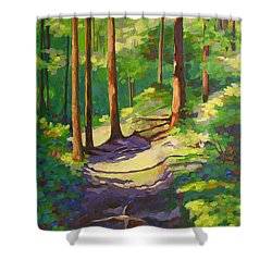 X Marks The Spot Shower Curtain by Mary McInnis