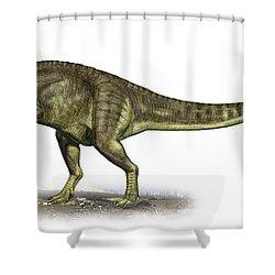 Yangchuanosaurus Shangiouensis Shower Curtain by Sergey Krasovskiy