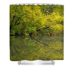 Yellow Autumn Shower Curtain by Karol Livote