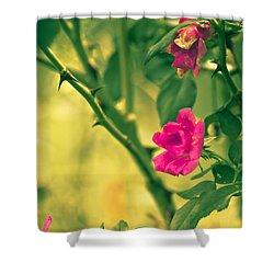 Yesterday In The Garden Shower Curtain by Kim Henderson