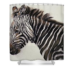Zebra  Shower Curtain by Odile Kidd