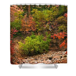 Zion Fall Colors Shower Curtain by Dave Dilli
