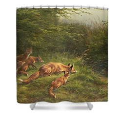 Foxes Waiting For The Prey   Shower Curtain by Carl Friedrich Deiker