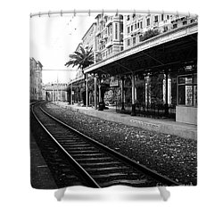 Old World Charm Shower Curtain by Ivy Ho