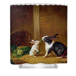 Two Rabbits Shower Curtain by H Baert