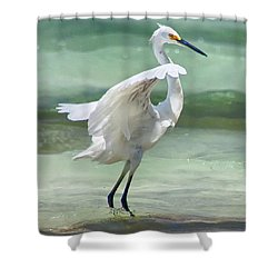 A Snowy Egret (egretta Thula) At Mahoe Shower Curtain by John Edwards