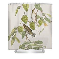 Autumnal Warbler Shower Curtain by John James Audubon