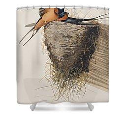 Barn Swallow Shower Curtain by John James Audubon