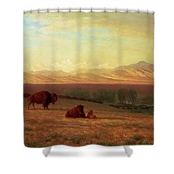 Buffalo On The Plains Shower Curtain by MotionAge Designs