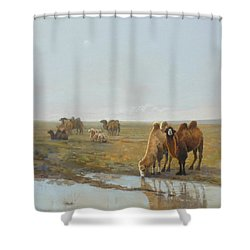 Camels Along The River Shower Curtain by Chen Baoyi