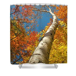 Canadian Autumn Shower Curtain by Mircea Costina Photography