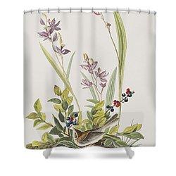 Field Sparrow Shower Curtain by John James Audubon