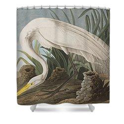 Great Egret Shower Curtain by John James Audubon