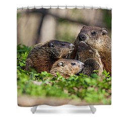 Happy Family Shower Curtain by Mircea Costina Photography
