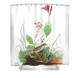 Henslow's Bunting  Shower Curtain by John James Audubon