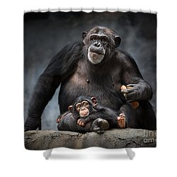 Mommy Pillow Shower Curtain by Jamie Pham