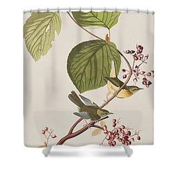 Pine Swamp Warbler Shower Curtain by John James Audubon