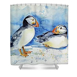 Puffins Shower Curtain by Kovacs Anna Brigitta